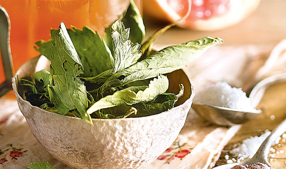alimentos q desinflaman el intestino
