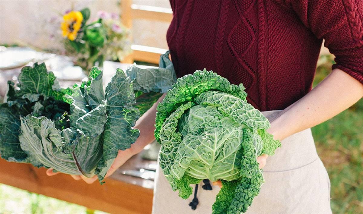 Dieta para adelgazar con hipotiroidismo y menopausia