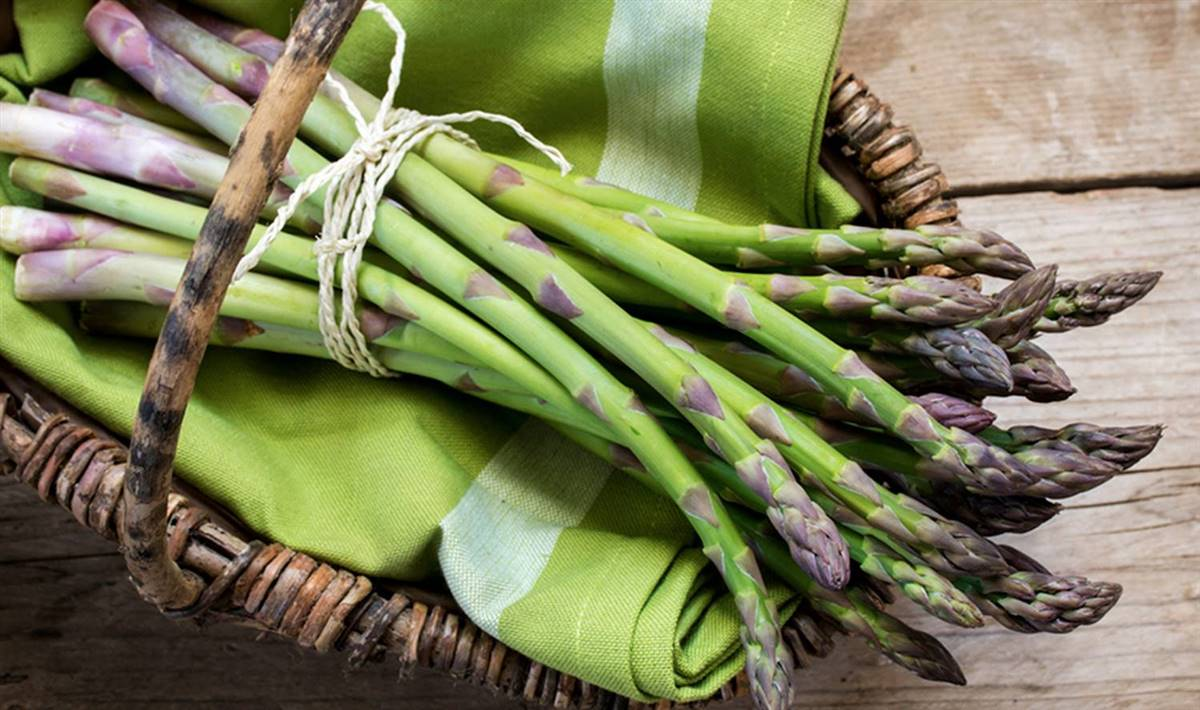 vegetales prohibidos para acido urico