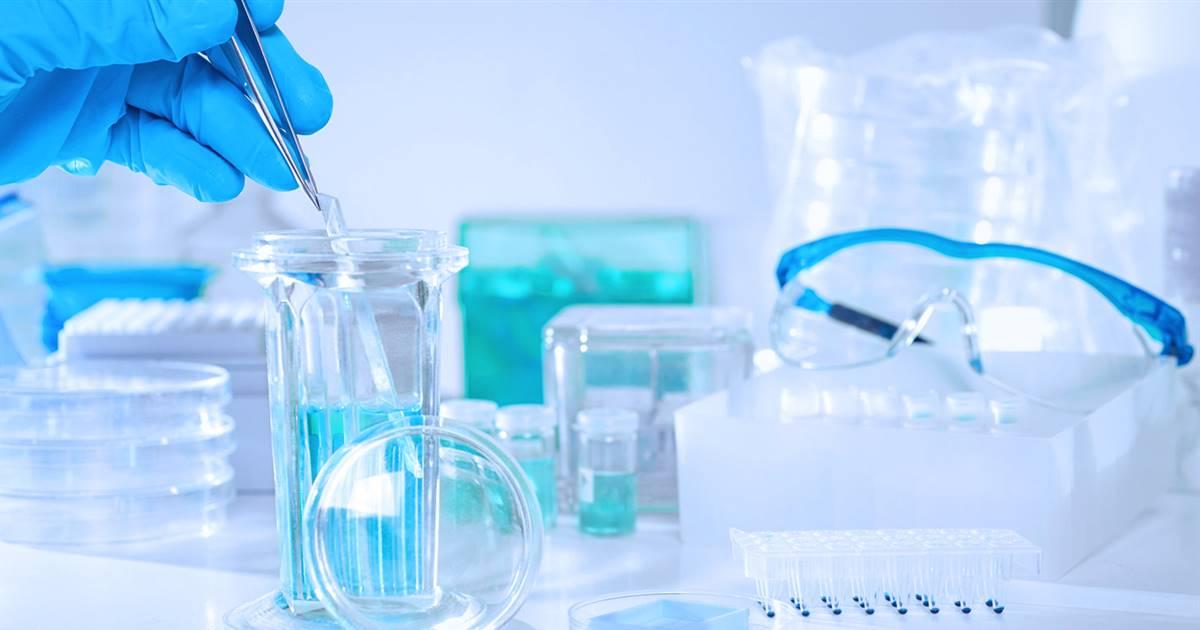 Descubren cómo prevenir la propagación del cáncer a través de los vasos linfáticos